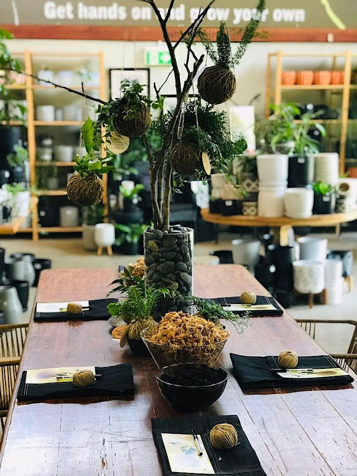 Eden Gardens Creates: Kokedama workshop image