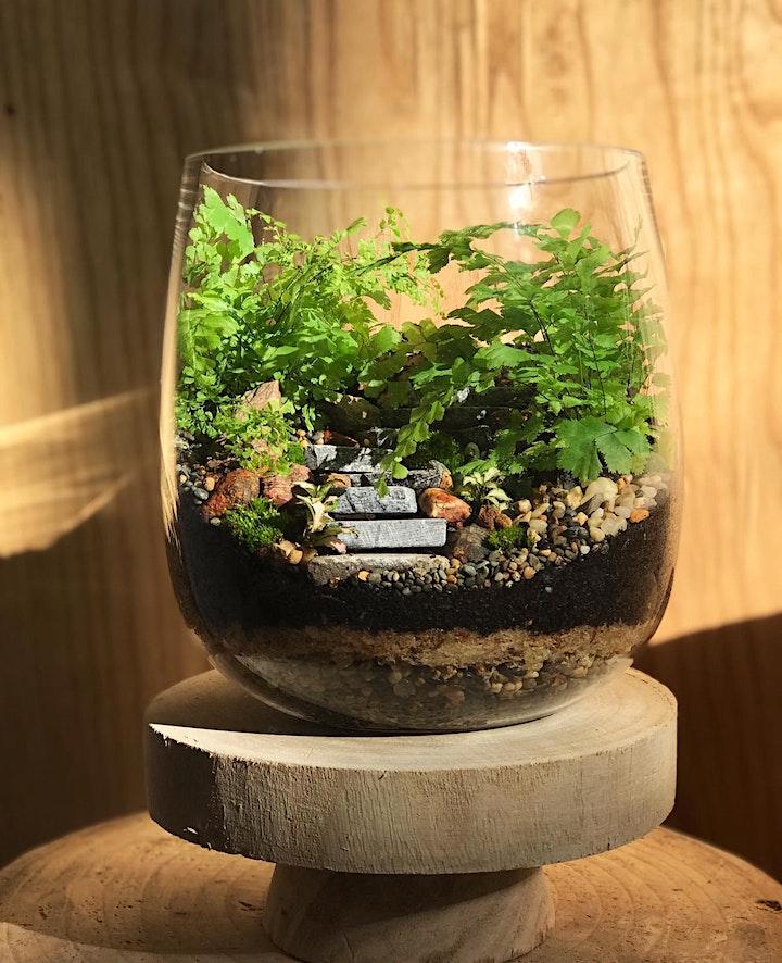 Eden Gardens Creates: Terrarium Workshop image
