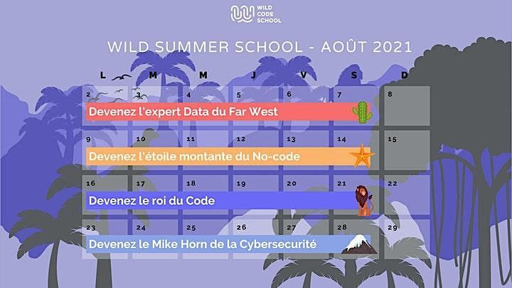 Image pour Wild Summer School - Apprenez à coder avec HTML et CSS