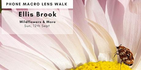 Phone Macro Flower Walk - Ellis Brook Wildflowers tickets
