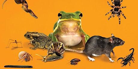 Zoolab: Eco Investigators tickets