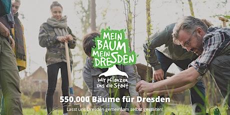 Mein Baum - Mein Dresden Pflanzparty (Steinbach) Tickets
