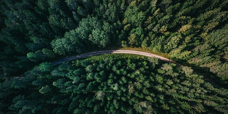 EU Forest Strategy: Strengthening forests for biodiversity & climate change tickets