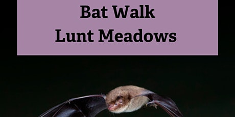 Bat Walk at Lunt Meadows tickets