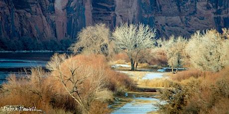 Desert Magic, Desert Wisdom tickets