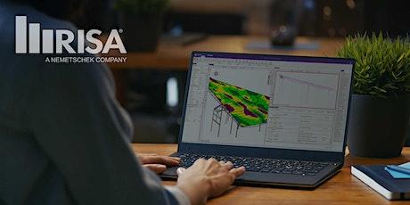 RISA-3D Quick Start Course entradas