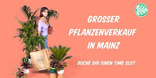 singles eppstein bauer singlebörse schweiz