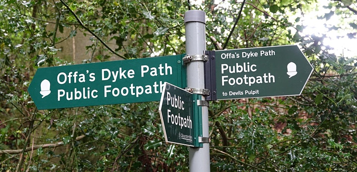 BIG WELSH WALK  2021- the Offa's Dyke  Path image