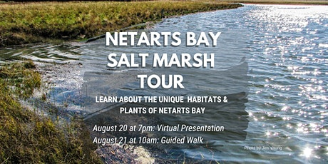 Salt Marsh Tour tickets