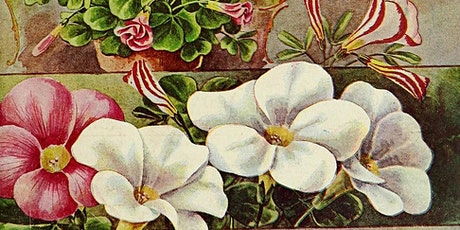 Plant Nurseries in England tickets