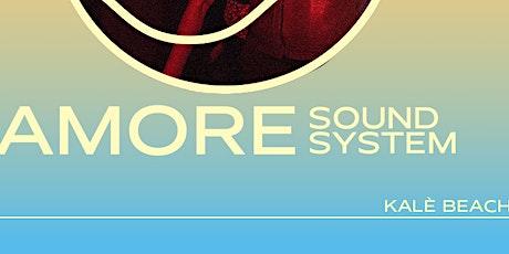 Litoranea #21 07/08 - w/ Amore- Stereocool (live) biglietti