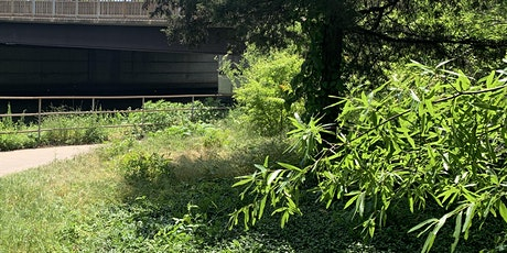 Vegetation Removal at Four Mile Run Trail Intersection tickets