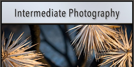 Intermediate Photography Class - In Store Roseville, CA tickets