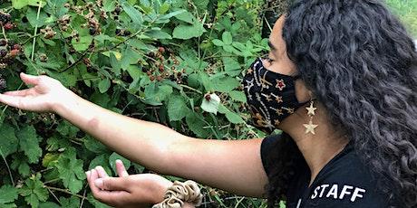 U-Pick Blackberries at the Farm tickets