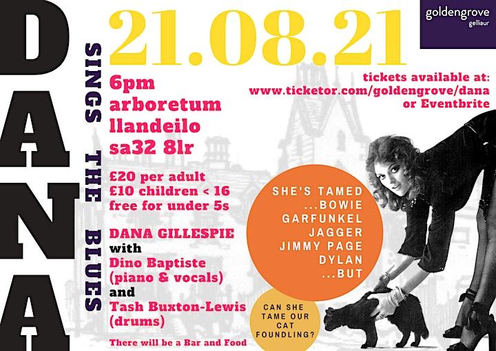 Dana Gillespie Sings The Blues image