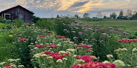 Cut your own Flowers - Evening of Wed, Aug 4 tickets