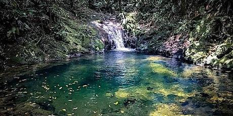 Cachoeira do Sagui I Angulo Travel ingressos