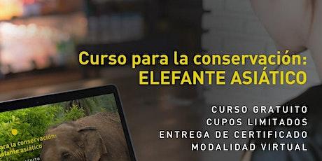 Curso para la conservación: Elefante Asiático boletos