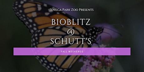 BioBlitz w/Seneca Park Zoo tickets