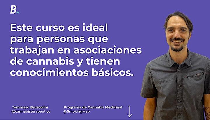 Imagen de Curso Reducción de Riesgos y Daños asociados al consumo de cannabis (70€)