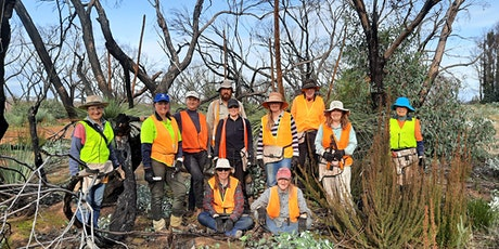 Kangaroo Island Bush Action Team (BAT) tickets