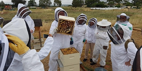 January 2022 Beekeeping for Beginners - 2 Day Course tickets