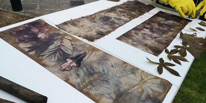 ECO-PRINTING ON PAPER in Ballitore image