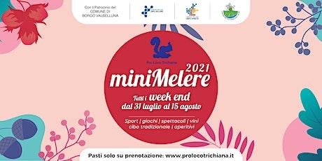 Mini Melere - sabato 07/08 biglietti