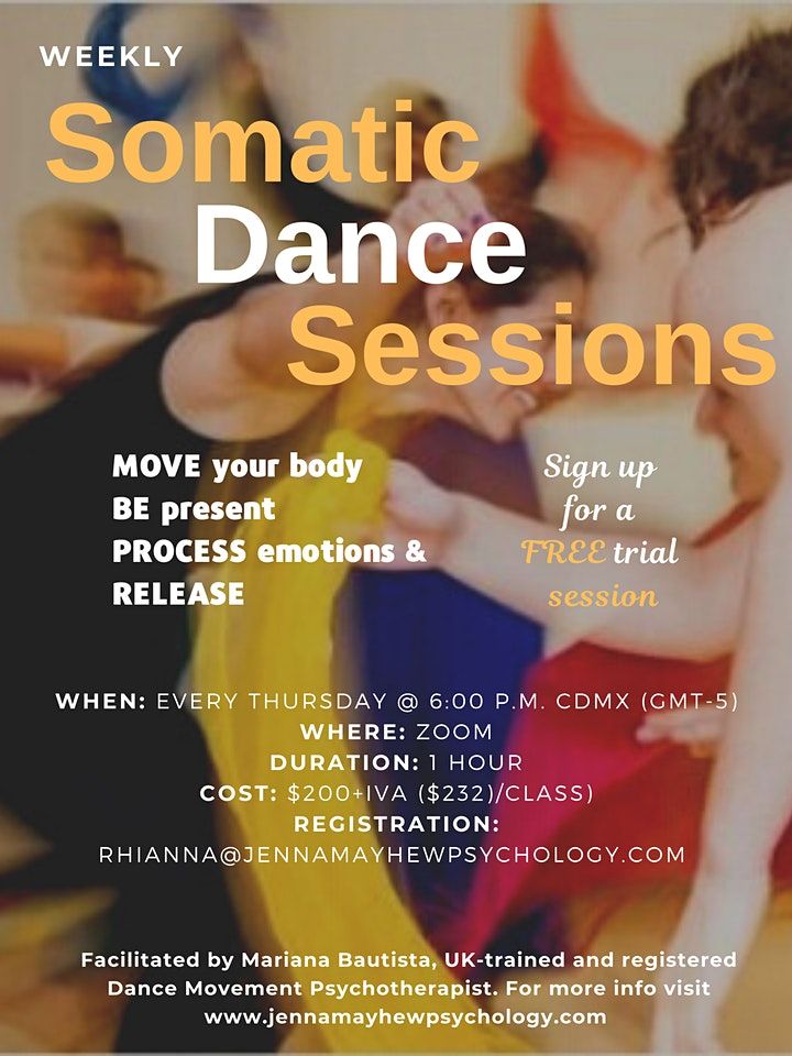 Somatic Dance Sessions image
