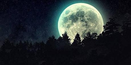 Envoi de Reiki à la nouvelle lune billets
