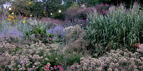 Workshop at The Battery:  Introduction to Ornamental Grasses tickets