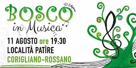 BOSCO IN MUSICA VII EDIZIONE biglietti