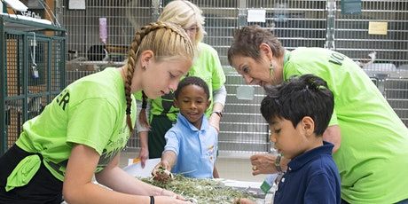 Kids For Animals Session 2 tickets