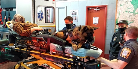 (ONLINE 101) Pawsitive Interactions for Response Operations tickets