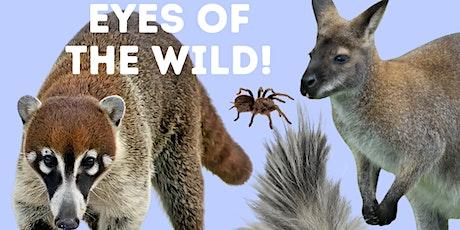 Eyes of the Wild Animal Presentation tickets