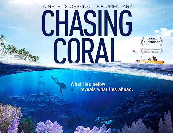 Pells Al Fresco Film Screenings - Positive Ecological  Stories image