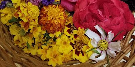 Natural Dye Workshop Flower Celebration tickets