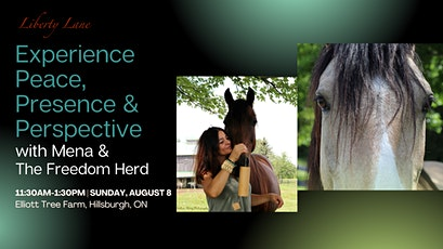 Experience Peace, Presence & Perspective with Mena & the Freedom Herd tickets