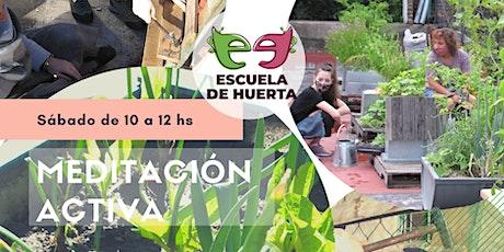 Voluntariar (Meditación Activa), en la Escuela de Huerta. entradas