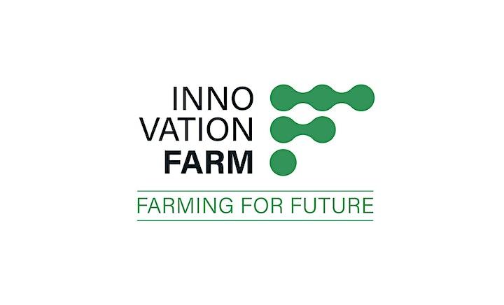 Innovation Farm LIVE: Bild