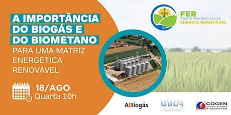 A importância do Biogás e do Biometano para uma matriz energética renovável ingressos