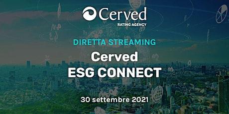 Cerved ESG Connect ingressos