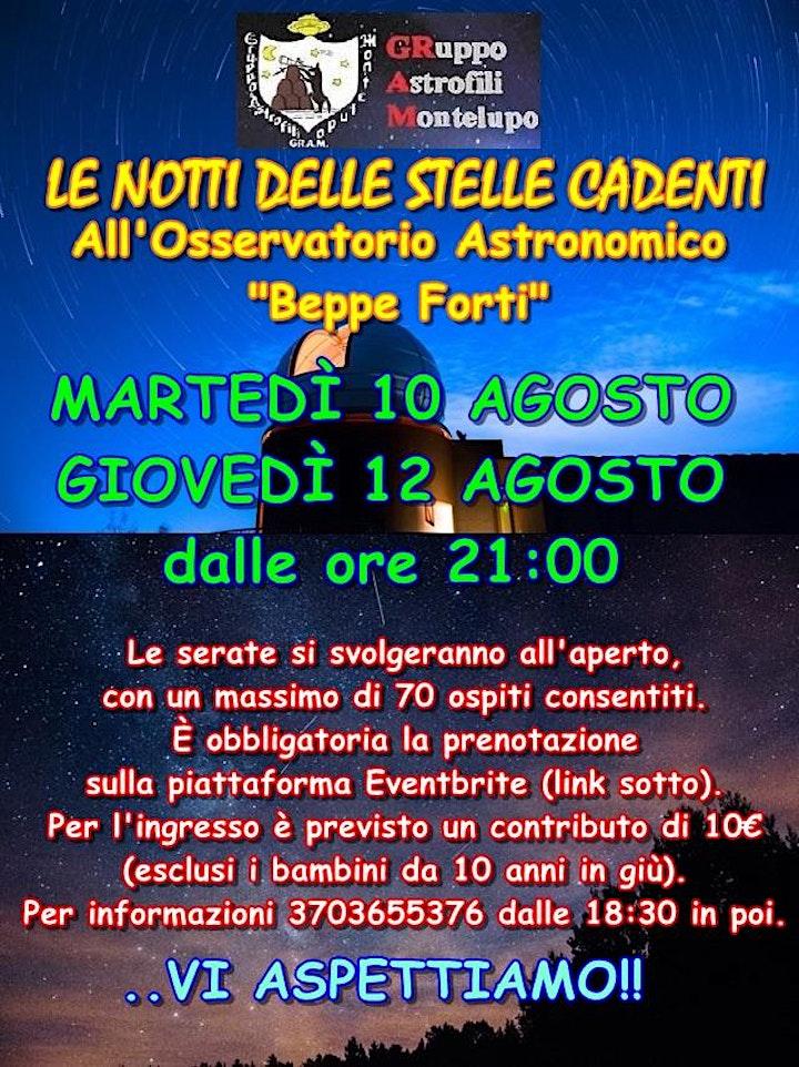 Immagine Le notti delle stelle cadenti  - Osservatorio Astronomico Beppe Forti
