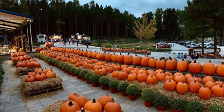 Fall Fest Pop-Up at Eno River Farm tickets