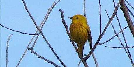 August Bird Monitoring Walk tickets