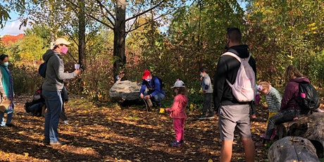 Jr. Forest Explorers:  Forest Numeracy and Literacy tickets