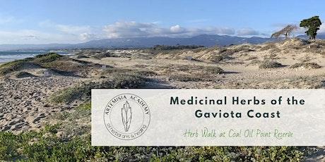 Medicinal Herbs of the Gaviota Coast - Herb Walk at Coal Oil Point Reserve tickets