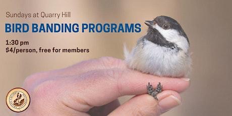 Bird Banding Sundays at Quarry Hill tickets
