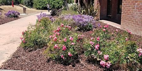 Almaden Winery Rose Garden Care tickets