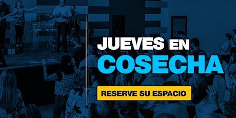 #JuevesEnCosecha | 5 agosto  2021 | 7PM boletos